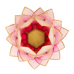 Eclairage d'ambiance Lotus rose bord or grand2