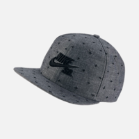 Casquette NIKE SB Chambray Phillips