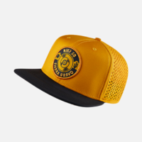 Casquette NIKE SB Train Perforated gold