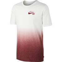 Tee shirt NIKE SB Dry white/team red
