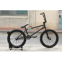 Bmx BSD custom Alex Donnachie replica