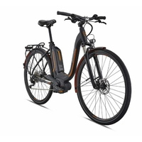 Vélo BREEZER Powertrip + LS 2018