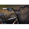 Bike-20201017-jbd-09706