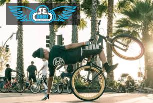pub_se_bikes_2019