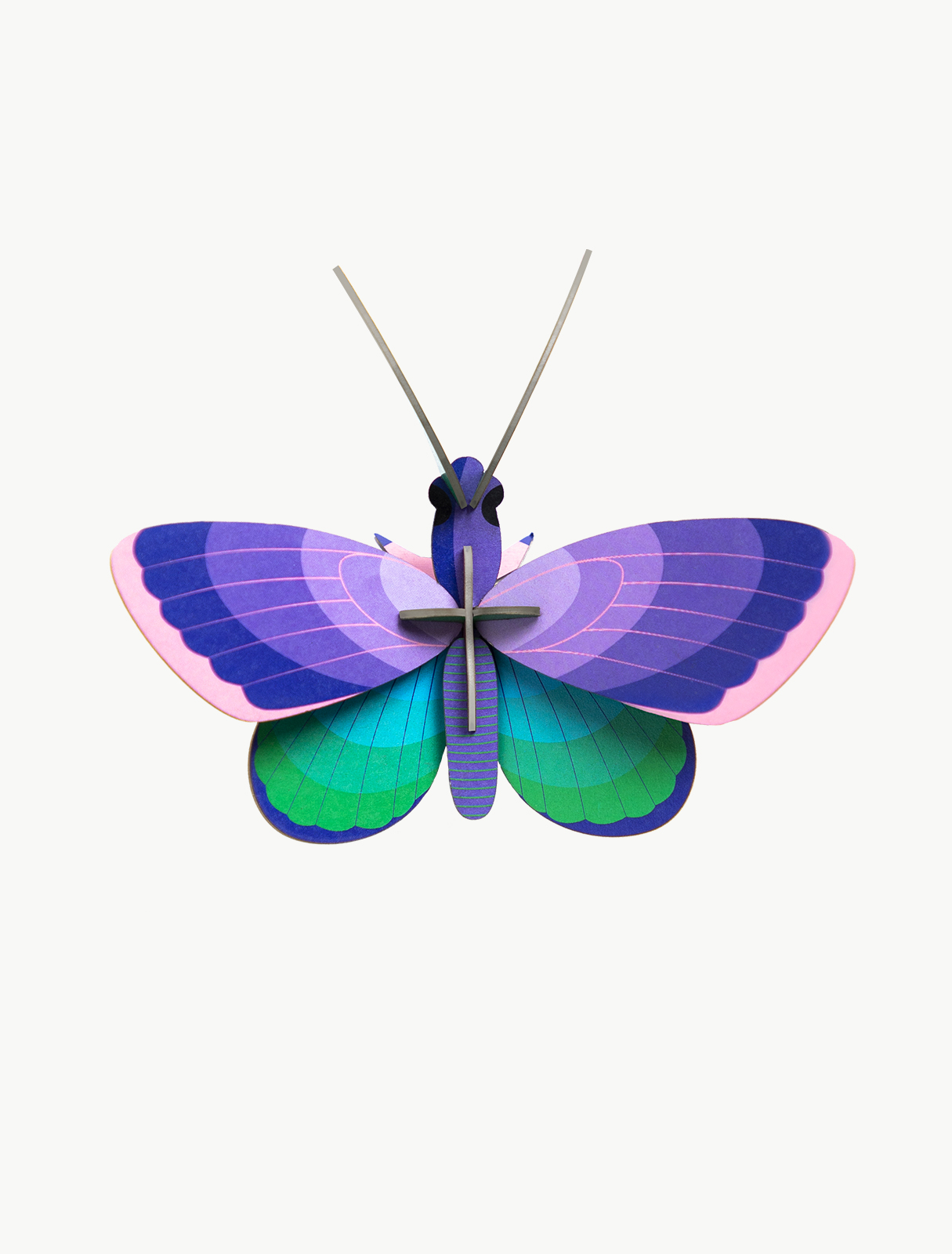 small-insects-blue-copper-butterfly-1
