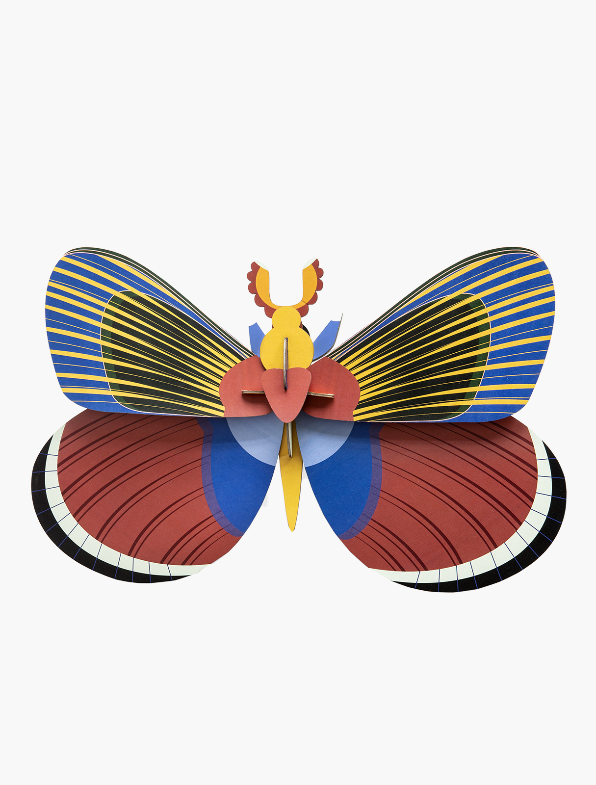 giant-butterfly