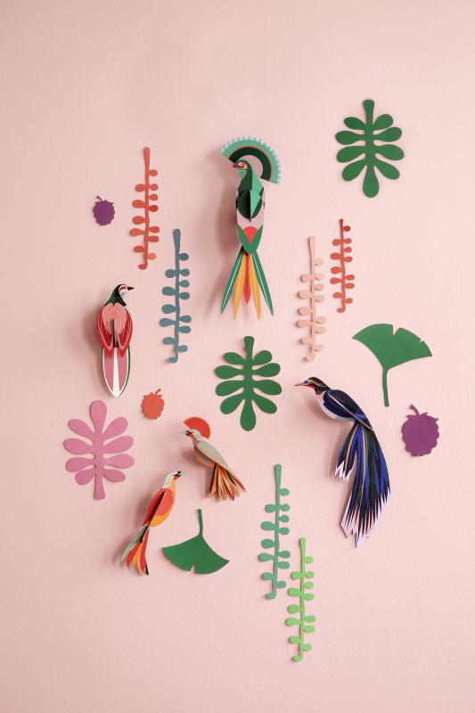 Mur de curiosités oiseaux et feuilles
