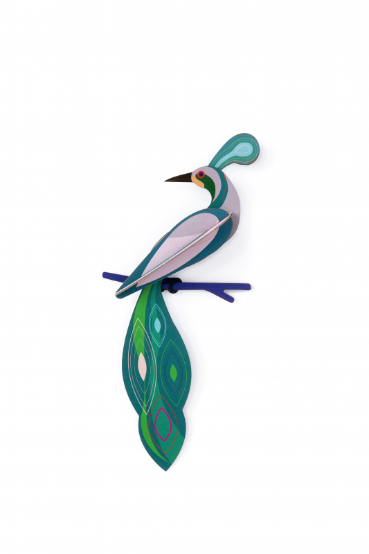 FIJI-decoration-murale-oiseau-studioroof_petit-d-homme-valenciennes