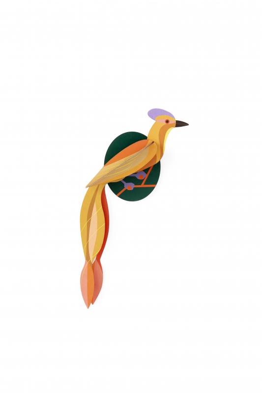 Décoration murale oiseau, olango