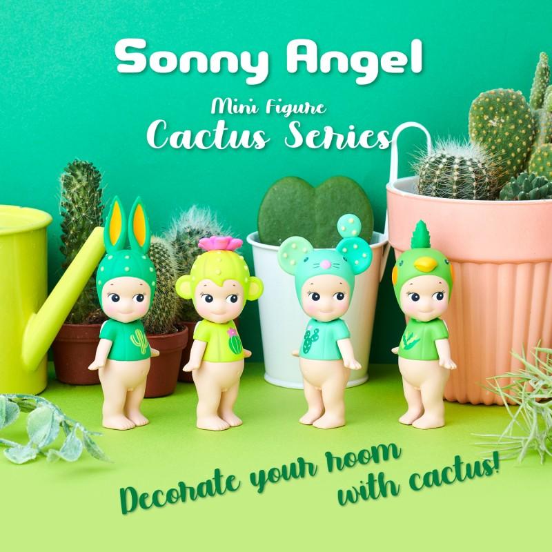 collection-complete-sa-cactus-boite-de-12-pcs (1)
