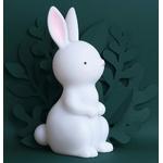 nlrawh35-lr-6-night-light-bunny
