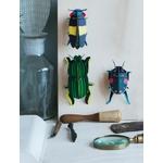 scarab-beetle-fond-2-copy2-1-475x625