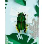 scrab-beetle-big2