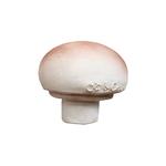 champignon-manolo-jouet-dentition-oli-and-carol-petit-d-homme-valenciennes