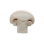 champignon-manolo-jouet-dentition-oli-and-carol-petit-d-homme-valenciennes1