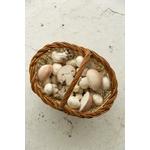 champignon-manolo-jouet-dentition-oli-and-carol-petit-d-homme-valenciennes4