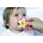 OliCarol_Chewy-To-Go-dentition-fleur-petit-Homme-Valenciennes