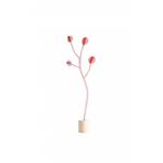 coraline-carte-3D-studioroof_petit-d-homme-valenciennes
