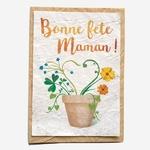 carte-graines-à-planter-growing_paper-petit_d_homme_valenciennes-maman-mères