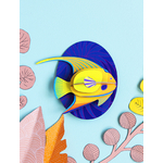 big-fishes-yellow-angelfish1