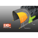 Maxxis EXO+ Jura cycles des salines Enduro VTT Franche Comté All moutain