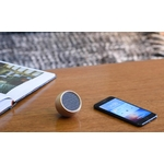 Gingko-Tumbler-Selfie-Bluetooth-Speaker-3