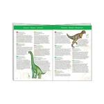 puzzle-d-observation-dinosaures-et-livret-djeco (2)