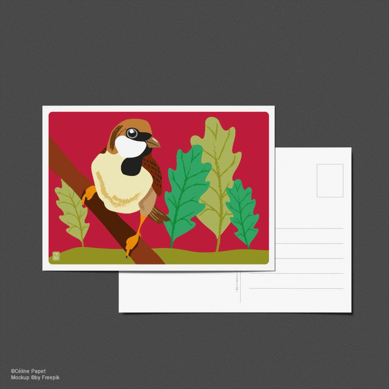 Carte postale Moineau