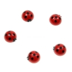 Magnets Coccinelles (Lot de 5)