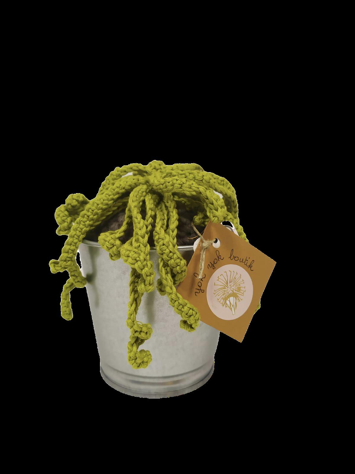 Cactus retombant en laine