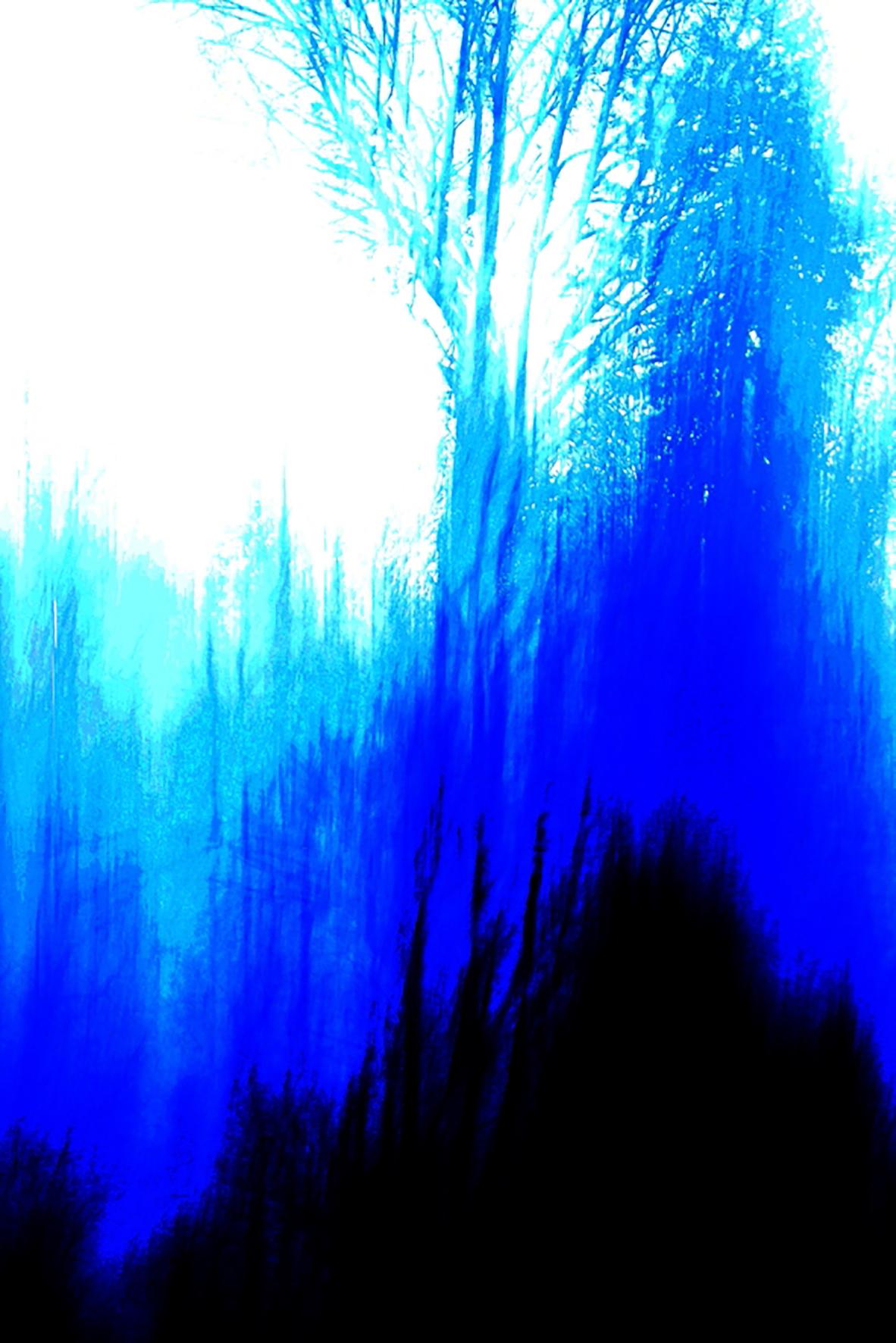 Bleu De Sologne