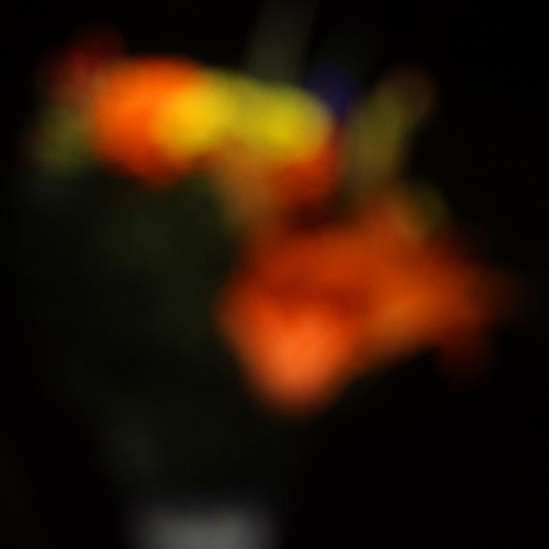 autour d'un bouquet III