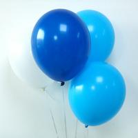 12 ballons de baudruche assortiment bleu