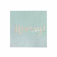 20 serviettes en papier Hooray vert menthe