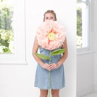 Fleur géante en papier de soie