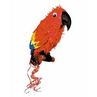 Pinata perroquet