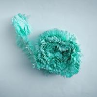 Guirlande franges vert menthe