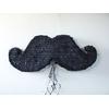 Pinata moustache