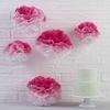 5 pompons en papier de soie rose ombré