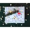 joli-paquet-cadeau-noel-sweet-party-day