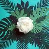 feuillage-vert-en-papier-predecoupe