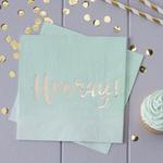 serviette-fete-en-papier-hooray-vert-menthe-ginger-ray