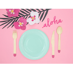assiette-carton-turquoise-18cm