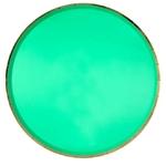 assiette-carton-vert