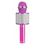 micro-soiree-karaoke-rose