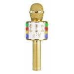 micro-lumineux-dore-karaoke