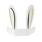 oreille-lapin-blanc