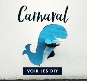 diy-deguisement-carnaval
