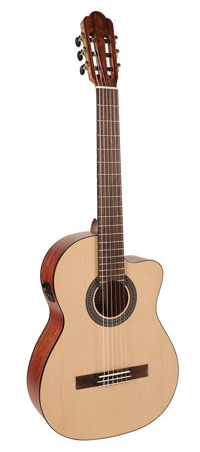 Guitare SALVADOR CS244CE