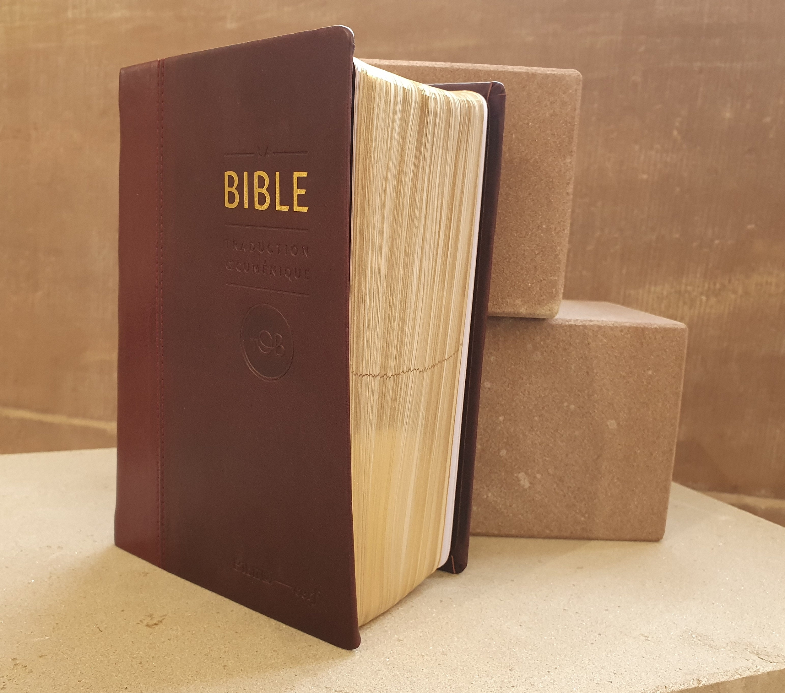 Bible reliure en simili cuir